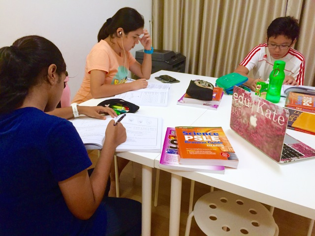 Punggol English Math Science Tuition Primary PSLE MOE