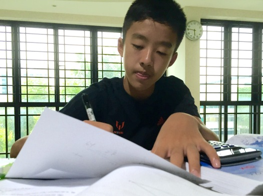 eduKate Tuition for Secondary Schools at Tampines, Marina Bay, Punggol for Maths Science English Primary Secondary