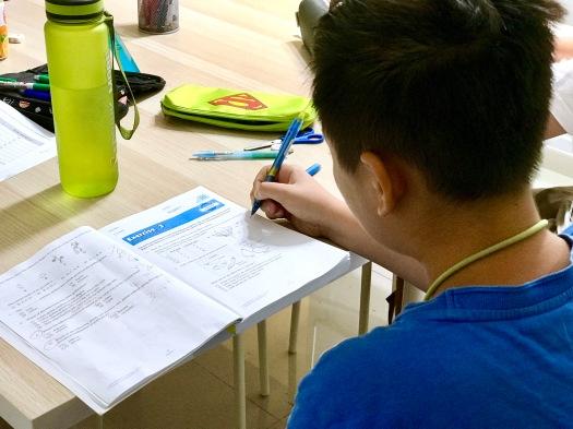 img_7847-English Math Science Tutor Singapore Tuition Centre for English Math Science PSLE GCE O levels IP IB IGCSE Small Group Tuition