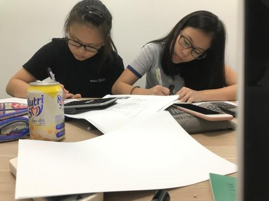 img_7855-English Math Science Tutor Singapore Tuition Centre for English Math Science PSLE GCE O levels IP IB IGCSE Small Group Tuition