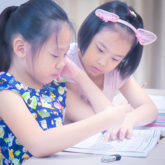 Pri 6 PSLE Small Group English Tuition Primary School by NIE MOE