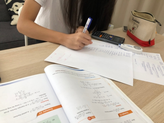 Punggol Small Group Maths Tuition Sec 2 Streaming Year Get A1 Distinctions Small Group RJC ACJC MOE NIE